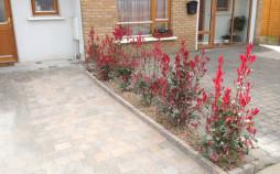 Front Garden Colour